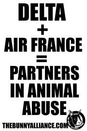 DELTA+Air France