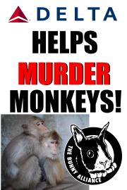 monkeyposter