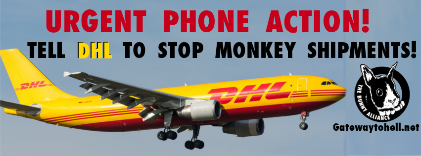 ABX phone action banner