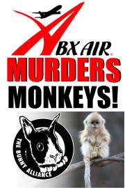 monkeyposterabx