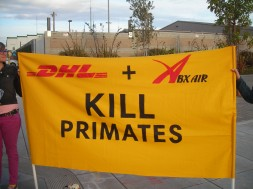 Banner SF DHL Demo