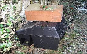 rat box plastic